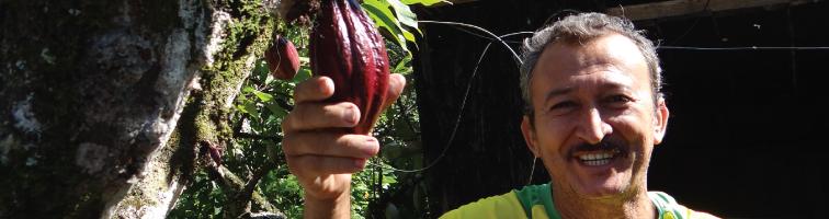 Selección del mejor cacao colombiano