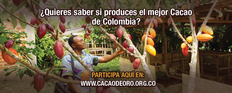 participa en el concurso de cacao de oro en Colombia